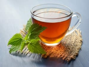 Green tea for weight loss: Popular options that are worth giving a try   Most Searched Products - Times of India