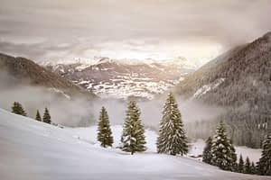 C:\Users\MsKrupa\AppData\Local\Microsoft\Windows\INetCache\IE\F07MM81F\winter-landscape-coered-in-snow-with-pine-trees[1].jpg