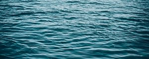 Biological Roles of Water: Why is water necessary for life ...